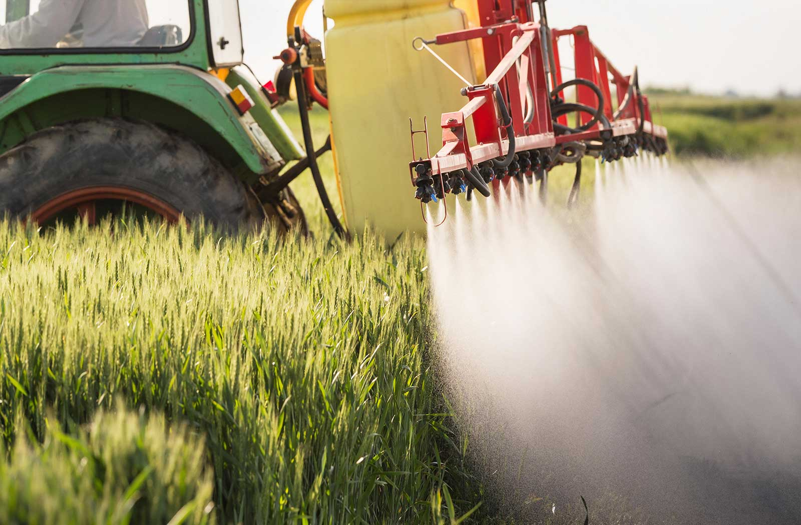 the war on weeds